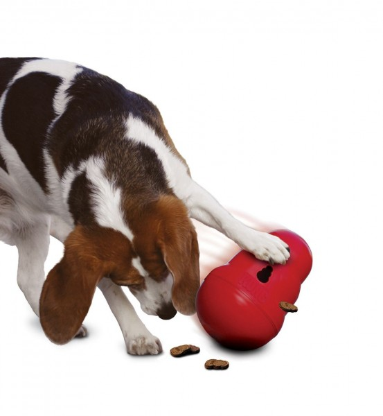 Kong Wobbler - Hundespielzeug