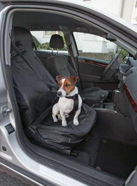 Auto Sitzbezug Cover Up
