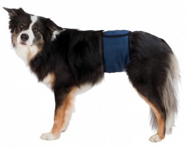 Bauchbinde für Hunde