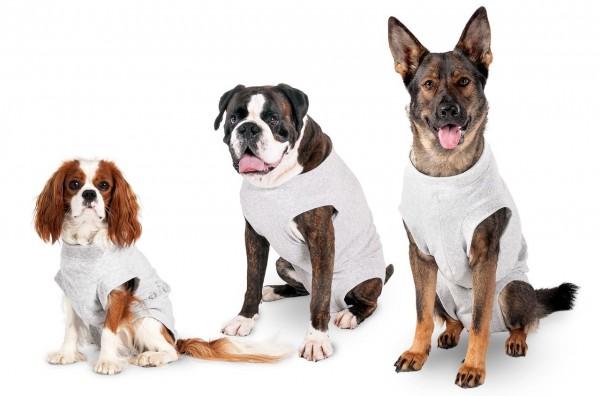 Safety Body für Hunde